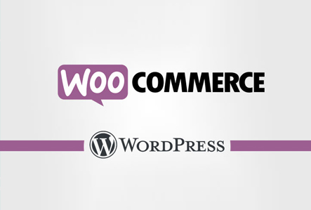 WordPress WooCommerce eCommerce Website Development