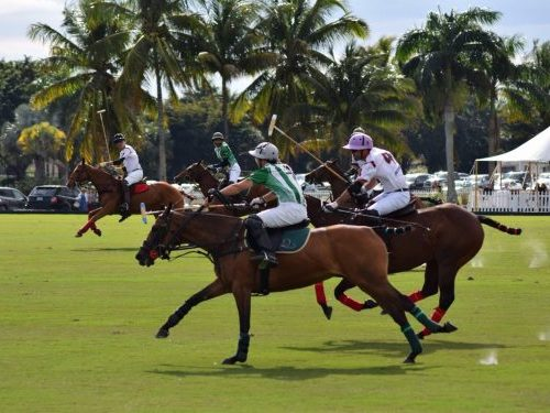 Wellington Polo Club