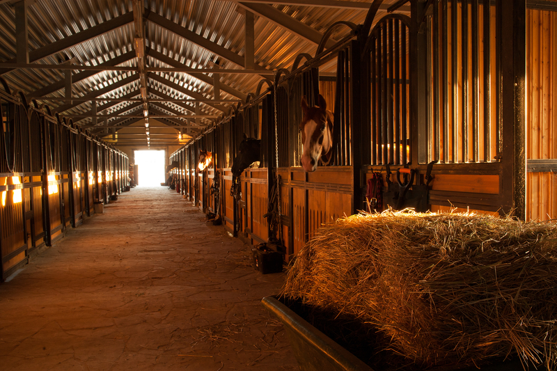 Equestrian Centers, Villages and Barns
