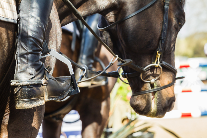 Horse Riding and Jumping Eventing Shows